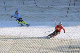 dual slalom ski racing